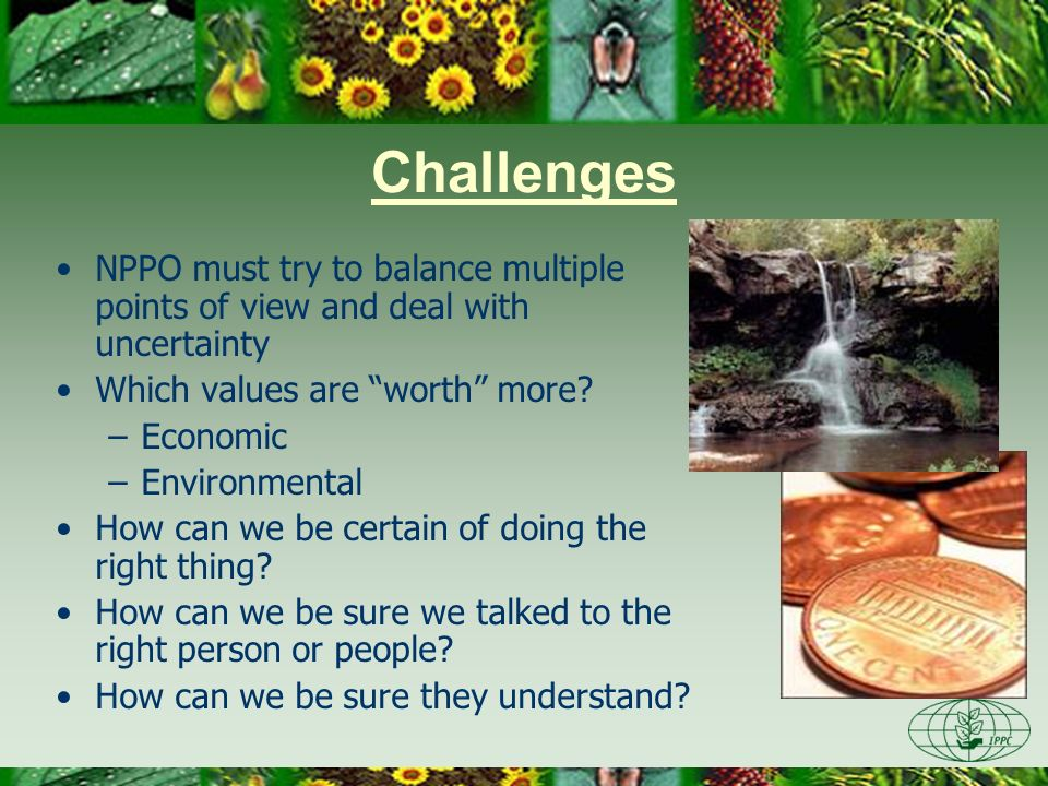 Challenges NPPO must try to balance multiple points of view and deal with uncertainty Which values are worth more? –Economic –Environmental How can we