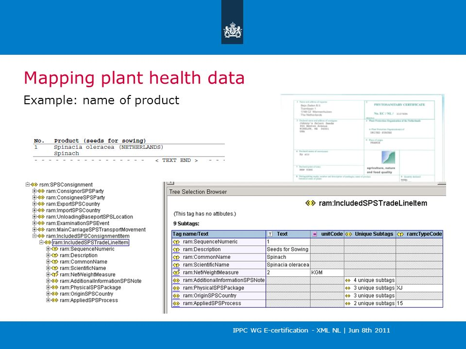 IPPC WG E-certification - XML NL | Jun 8th 2011 Mapping plant health data Example: name of product