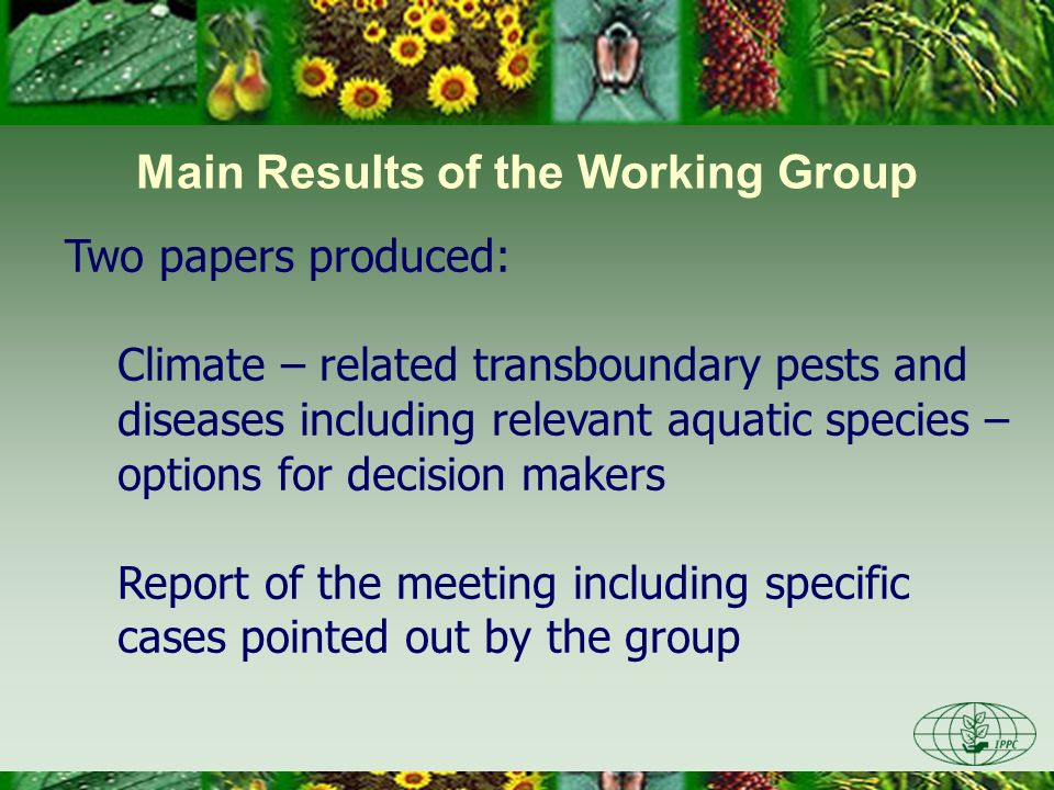 Main Results of the Working Group Two papers produced: Climate – related transboundary pests and diseases including relevant aquatic species – options for decision makers Report of the meeting including specific cases pointed out by the group