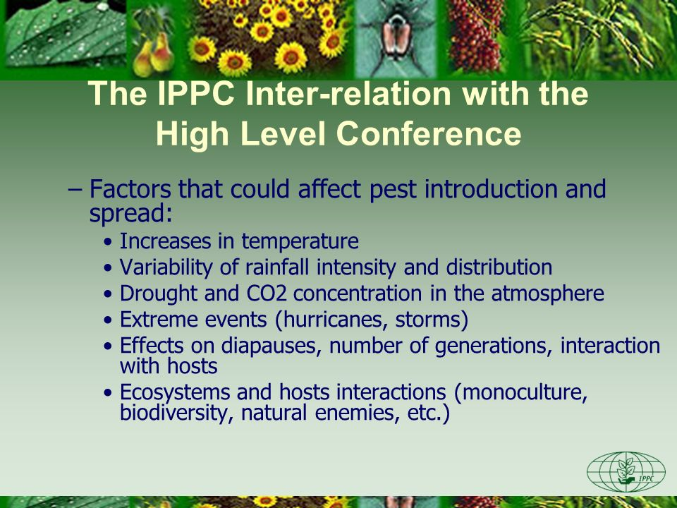The IPPC Inter-relation with the High Level Conference –Factors that could affect pest introduction and spread: Increases in temperature Variability of rainfall intensity and distribution Drought and CO2 concentration in the atmosphere Extreme events (hurricanes, storms) Effects on diapauses, number of generations, interaction with hosts Ecosystems and hosts interactions (monoculture, biodiversity, natural enemies, etc.)