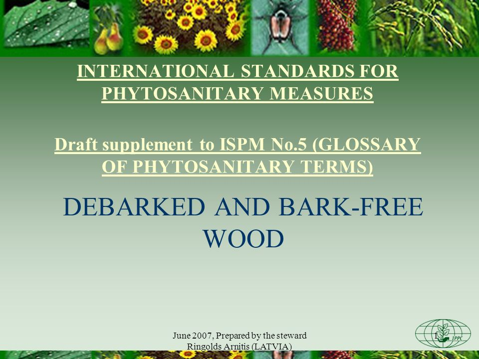 June 2007, Prepared by the steward Ringolds Arnitis (LATVIA) 2 Scope of the supplement to ISPM No.5 (GLOSSARY OF PHYTOSANITARY TERMS) The supplement: provides practical guidance on differentiating between debarked wood and bark-free wood does not specify the effectiveness or technical justification of removal of bark