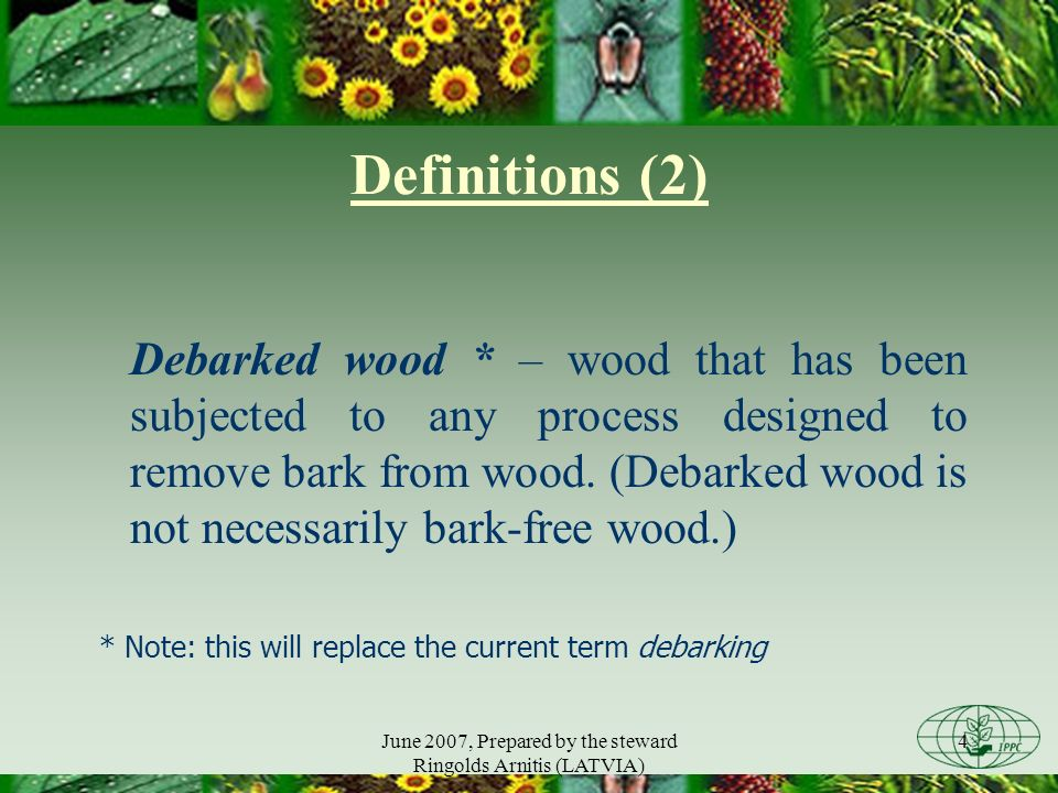 June 2007, Prepared by the steward Ringolds Arnitis (LATVIA) 5 Debarked or bark free wood some NPPOs apply a requirement for debarked or bark-free wood as a phytosanitary measure different interpretation of debarked and bark- free wood may have an impact on the international trade in wood