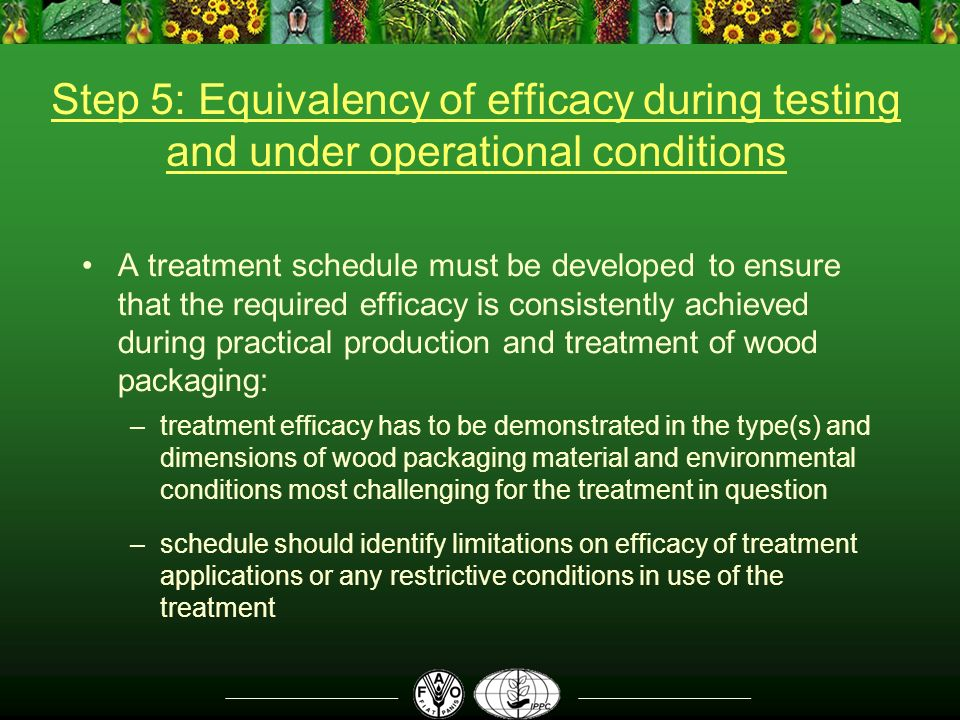 Step 5: Equivalency of efficacy during testing and under operational conditions A treatment schedule must be developed to ensure that the required efficacy is consistently achieved during practical production and treatment of wood packaging: –treatment efficacy has to be demonstrated in the type(s) and dimensions of wood packaging material and environmental conditions most challenging for the treatment in question –schedule should identify limitations on efficacy of treatment applications or any restrictive conditions in use of the treatment