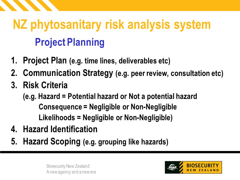 Biosecurity New Zealand: A new agency and a new era 10 NZ phytosanitary risk analysis system Project Planning 1.Project Plan (e.g. time lines, deliver
