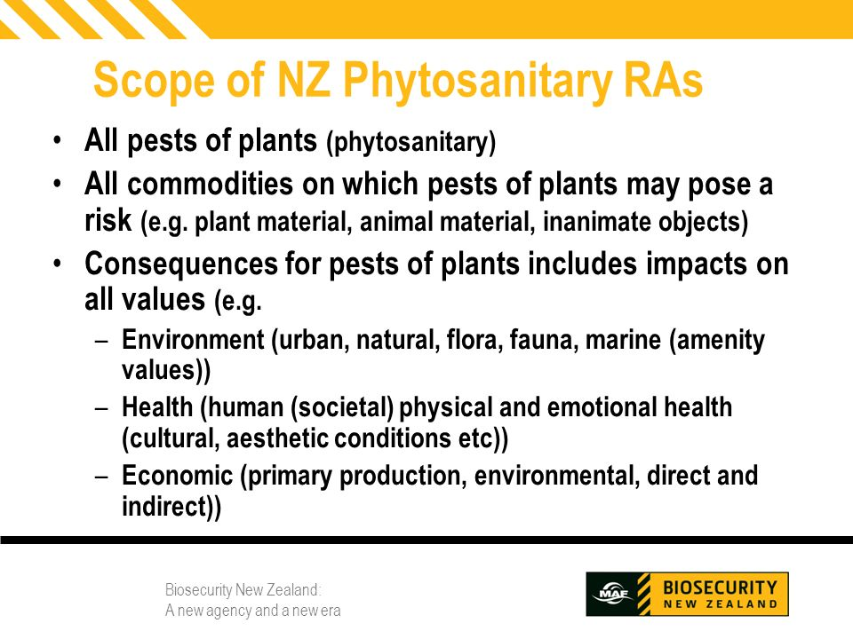 Biosecurity New Zealand: A new agency and a new era 3 Scope of NZ Phytosanitary RAs All pests of plants (phytosanitary) All commodities on which pests