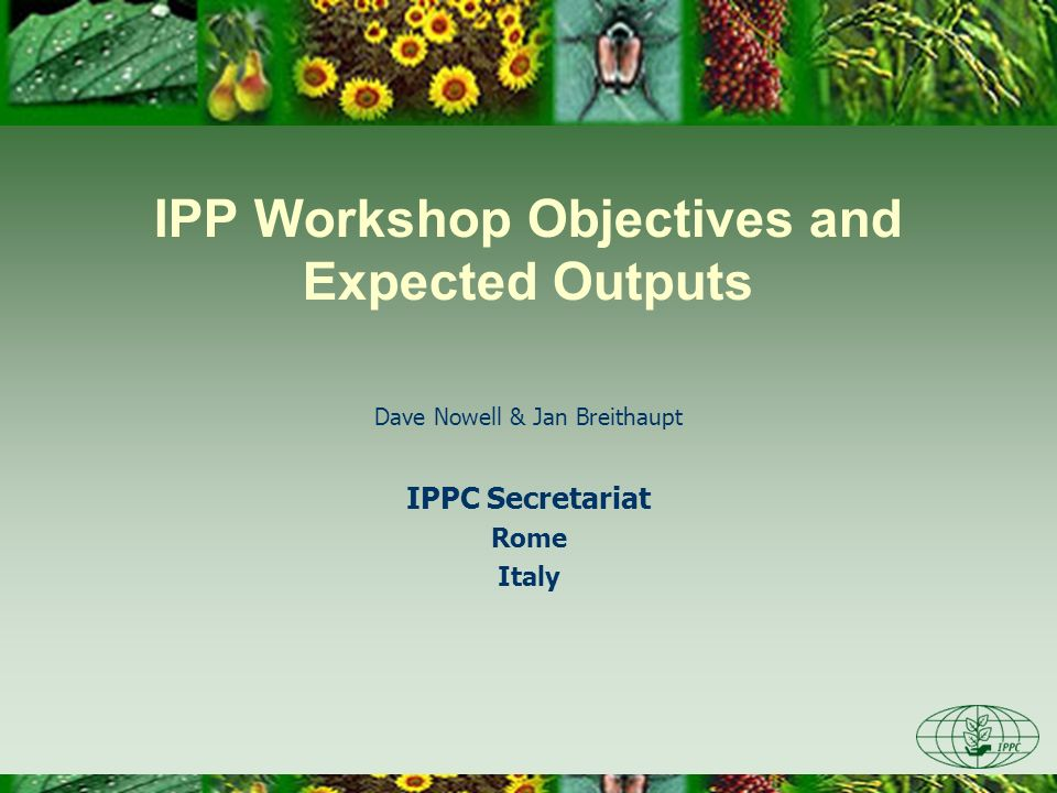 IPP Workshop Objectives and Expected Outputs Dave Nowell & Jan Breithaupt IPPC Secretariat Rome Italy