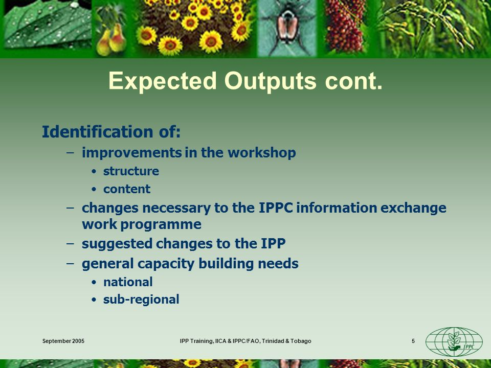 September 2005IPP Training, IICA & IPPC/FAO, Trinidad & Tobago5 Expected Outputs cont.