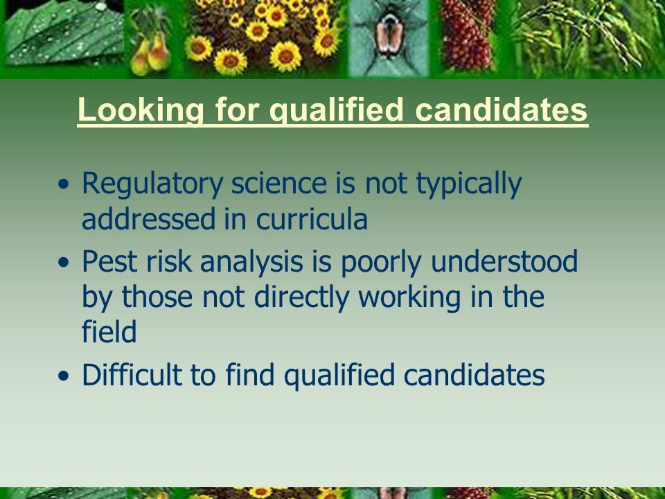 Looking for qualified candidates Regulatory science is not typically addressed in curricula Pest risk analysis is poorly understood by those not directly working in the field Difficult to find qualified candidates