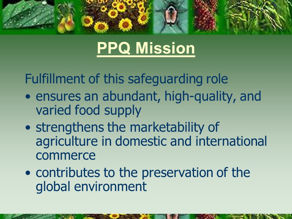PPQ Mission Fulfillment of this safeguarding role ensures an abundant, high-quality, and varied food supply strengthens the marketability of agriculture in domestic and international commerce contributes to the preservation of the global environment