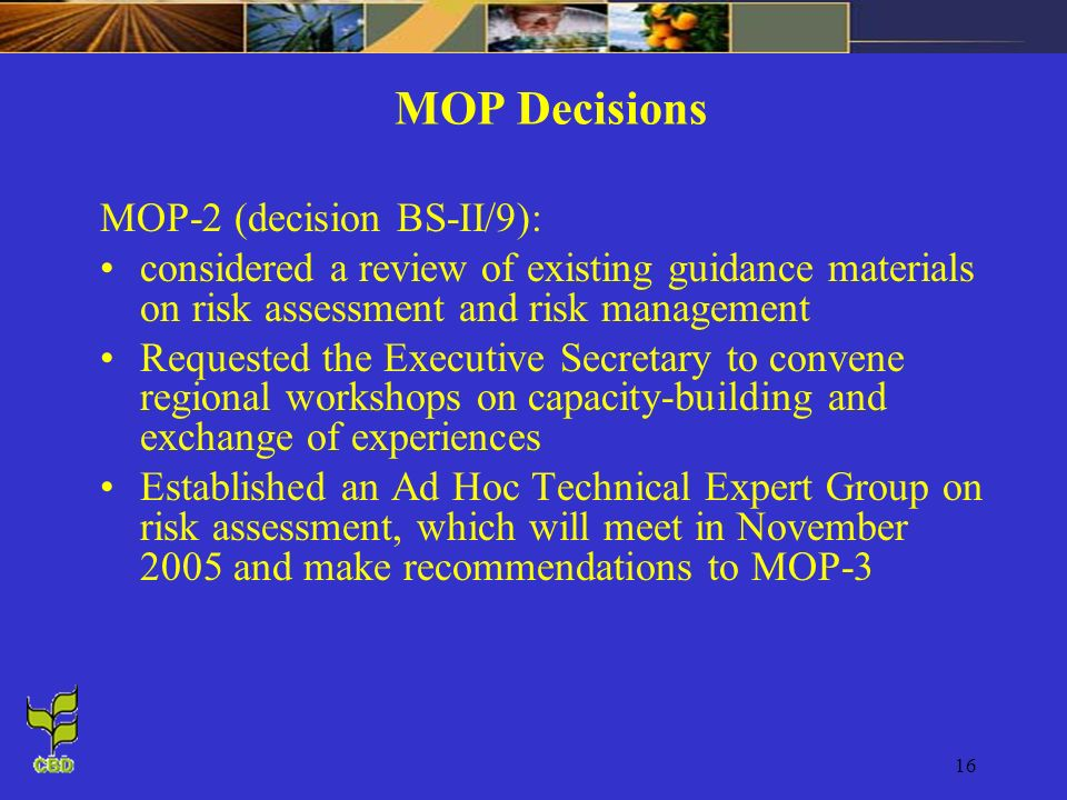 16 MOP Decisions MOP-2 (decision BS-II/9): considered a review of existing guidance materials on risk assessment and risk management Requested the Exe