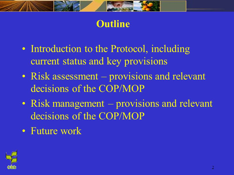 2 Outline Introduction to the Protocol, including current status and key provisions Risk assessment – provisions and relevant decisions of the COP/MOP