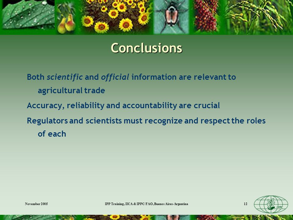 November 2005IPP Training, IICA & IPPC/FAO, Buenos Aires-Argentina12 Conclusions Both scientific and official information are relevant to agricultural trade Accuracy, reliability and accountability are crucial Regulators and scientists must recognize and respect the roles of each
