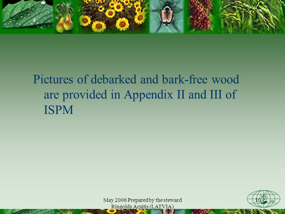 May 2006 Prepared by the steward Ringolds Arnitis (LATVIA) 10 Pictures of debarked and bark-free wood are provided in Appendix II and III of ISPM