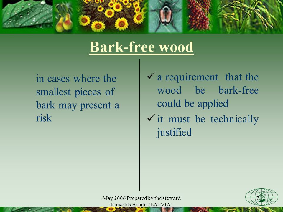 May 2006 Prepared by the steward Ringolds Arnitis (LATVIA) 7 Bark-free wood in cases where the smallest pieces of bark may present a risk a requirement that the wood be bark-free could be applied it must be technically justified