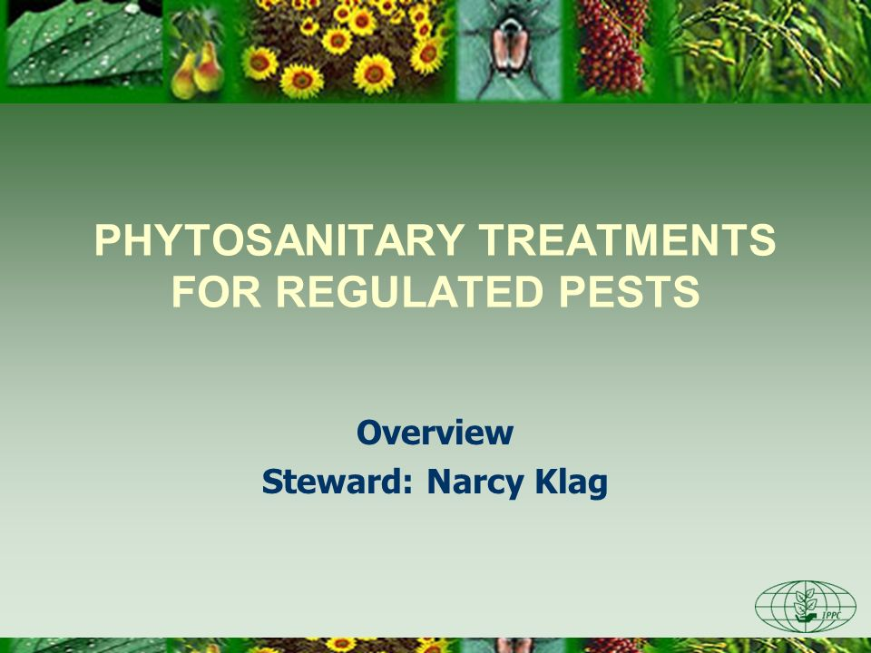 PHYTOSANITARY TREATMENTS FOR REGULATED PESTS Overview Steward: Narcy Klag