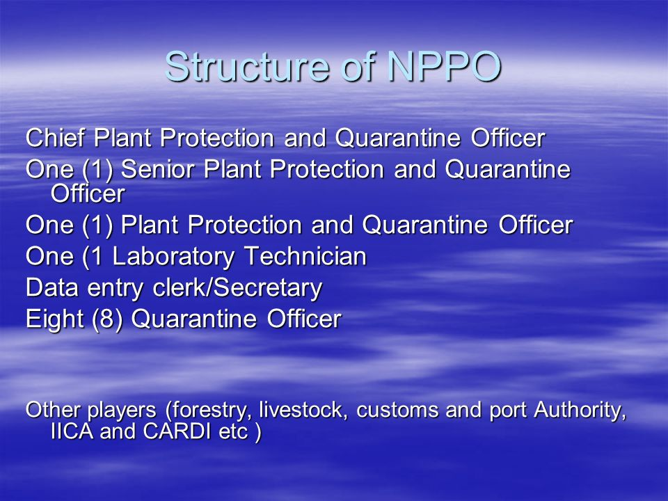 Structure of NPPO Chief Plant Protection and Quarantine Officer One (1) Senior Plant Protection and Quarantine Officer One (1) Plant Protection and Qu