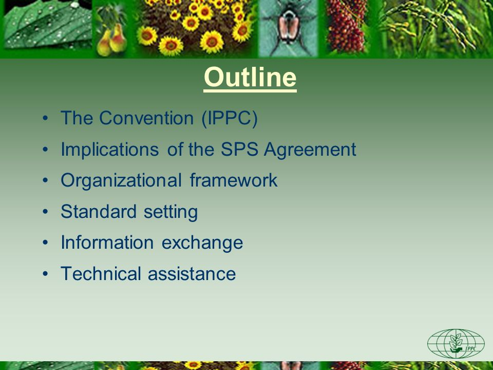Outline The Convention (IPPC) Implications of the SPS Agreement Organizational framework Standard setting Information exchange Technical assistance