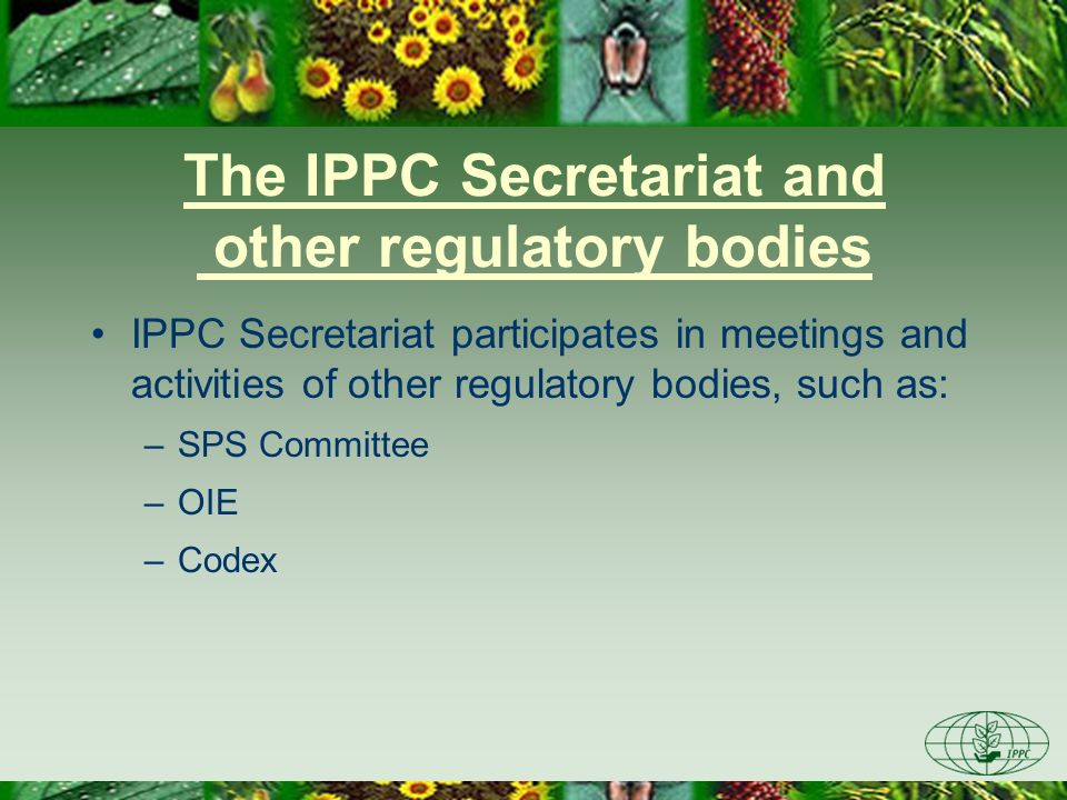 The IPPC Secretariat and other regulatory bodies IPPC Secretariat participates in meetings and activities of other regulatory bodies, such as: –SPS Co