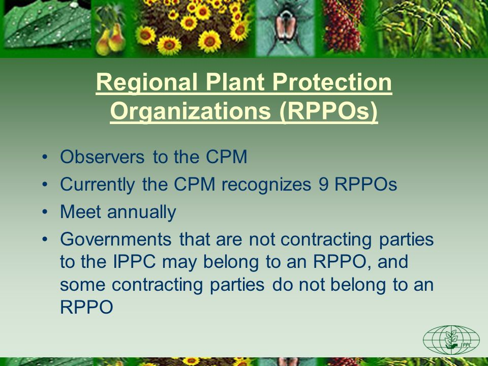 Regional Plant Protection Organizations (RPPOs) Observers to the CPM Currently the CPM recognizes 9 RPPOs Meet annually Governments that are not contr