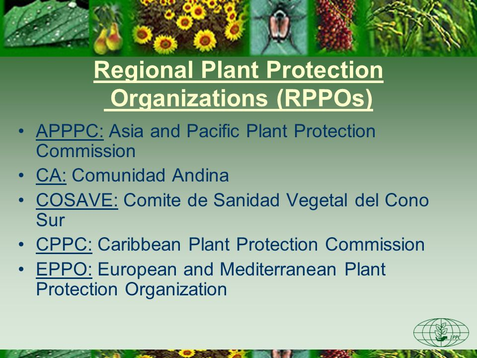Regional Plant Protection Organizations (RPPOs) APPPC: Asia and Pacific Plant Protection Commission CA: Comunidad Andina COSAVE: Comite de Sanidad Vegetal del Cono Sur CPPC: Caribbean Plant Protection Commission EPPO: European and Mediterranean Plant Protection Organization