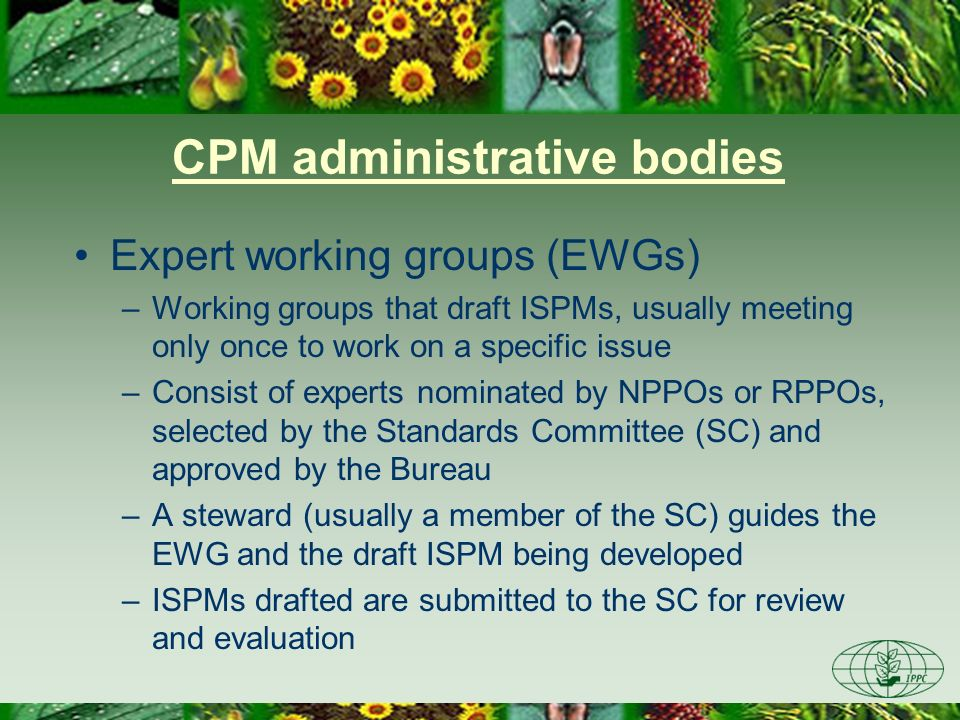 CPM administrative bodies Expert working groups (EWGs) –Working groups that draft ISPMs, usually meeting only once to work on a specific issue –Consis