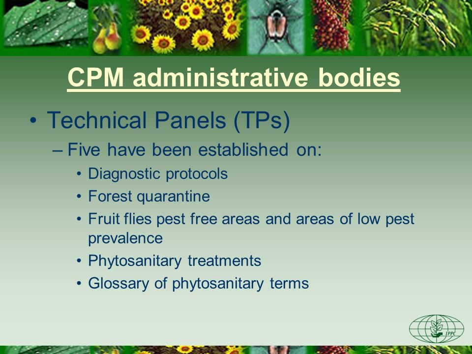 CPM administrative bodies Technical Panels (TPs) –Five have been established on: Diagnostic protocols Forest quarantine Fruit flies pest free areas an