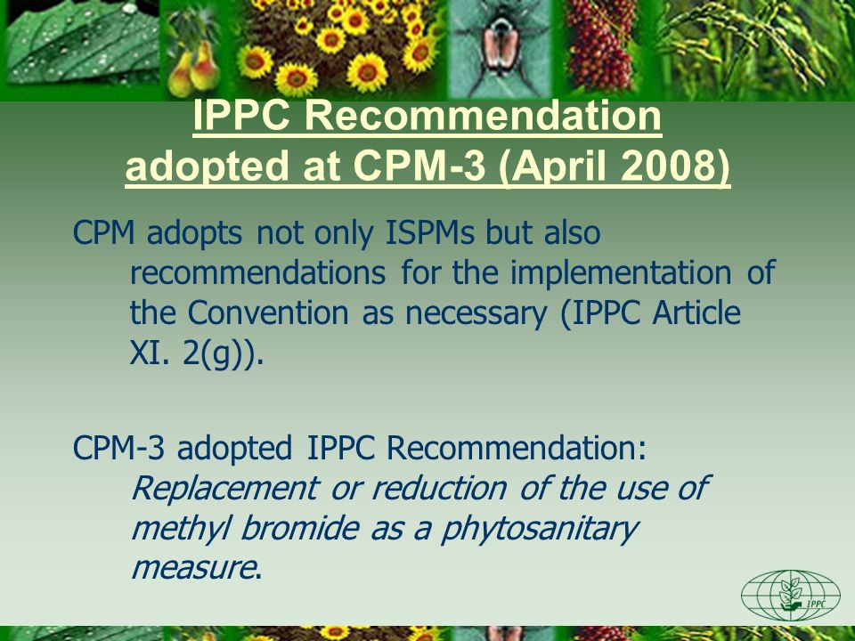 IPPC Recommendation adopted at CPM-3 (April 2008) CPM adopts not only ISPMs but also recommendations for the implementation of the Convention as neces