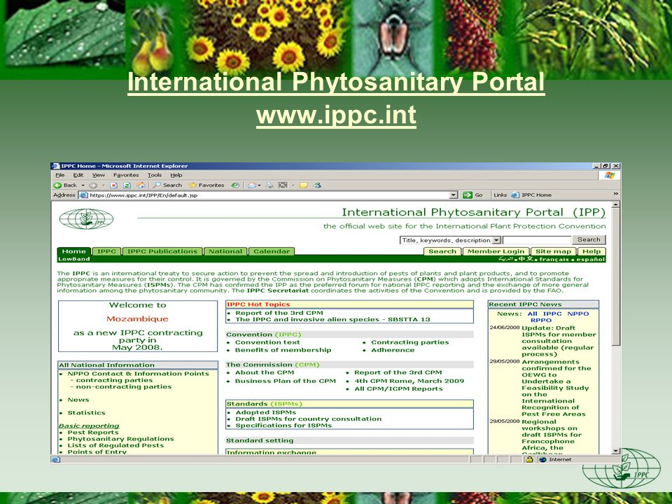 International Phytosanitary Portal www.ippc.int