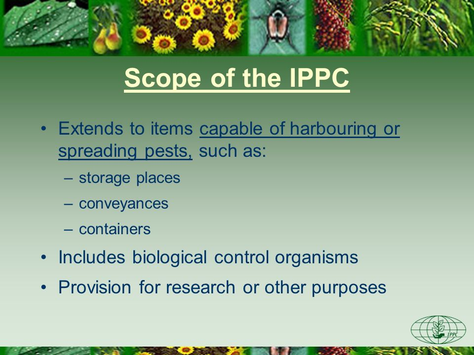 Scope of the IPPC Extends to items capable of harbouring or spreading pests, such as: –storage places –conveyances –containers Includes biological con