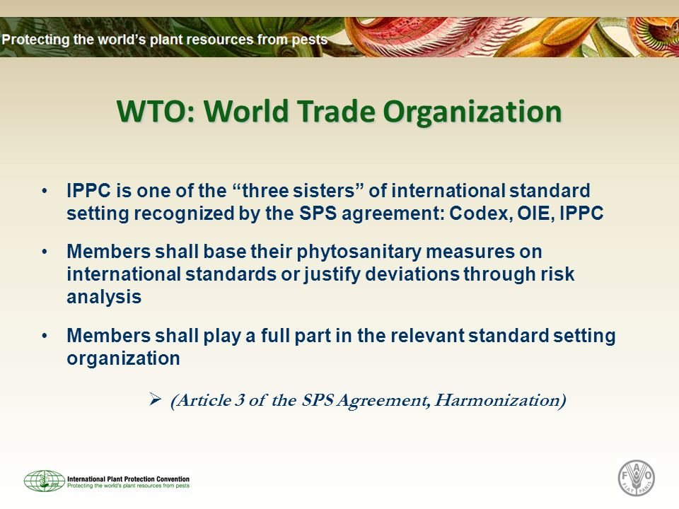 WTO: World Trade Organization IPPC is one of the three sisters of international standard setting recognized by the SPS agreement: Codex, OIE, IPPC Mem