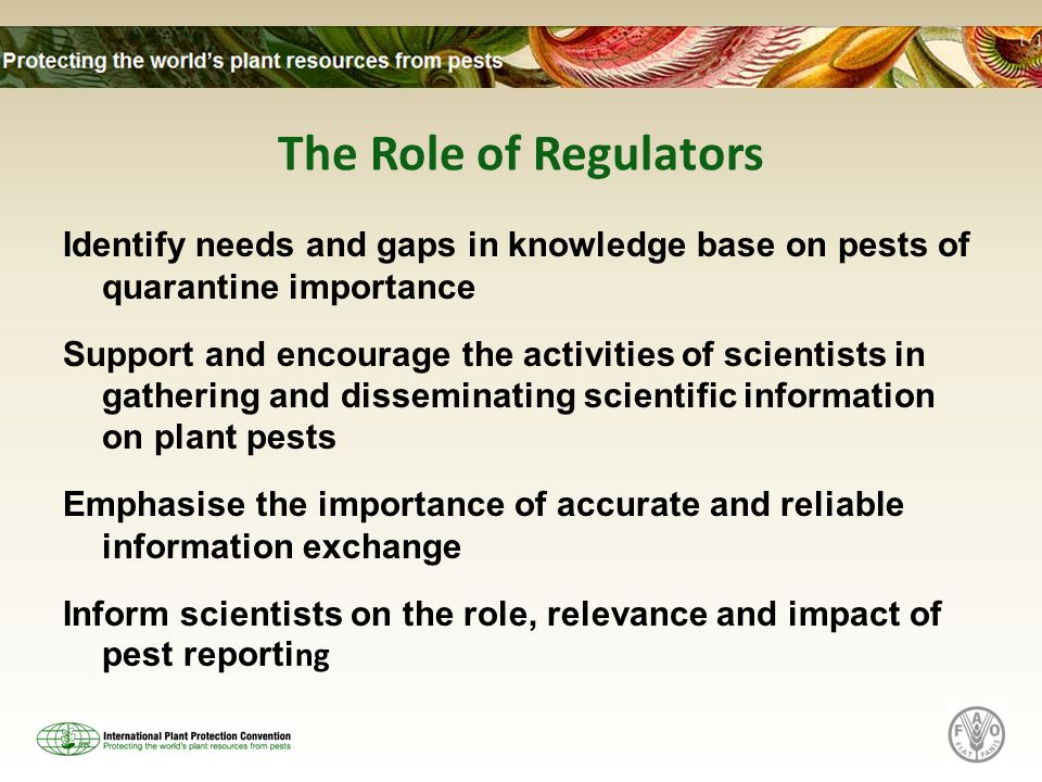 The Role of Regulators Identify needs and gaps in knowledge base on pests of quarantine importance Support and encourage the activities of scientists