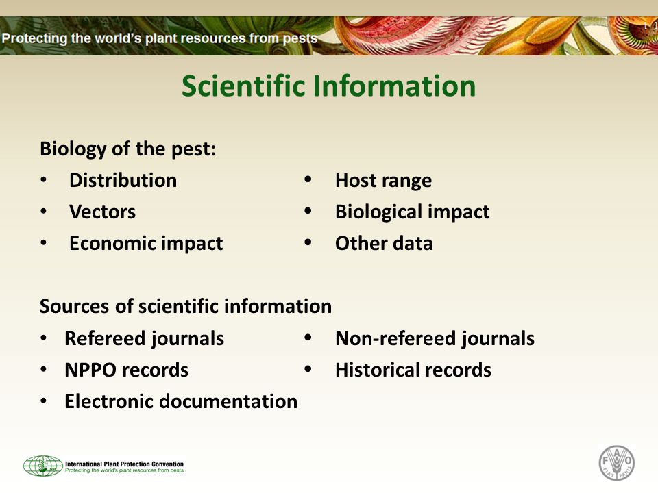 Scientific Information Biology of the pest: Distribution Host range Vectors Biological impact Economic impact Other data Sources of scientific informa