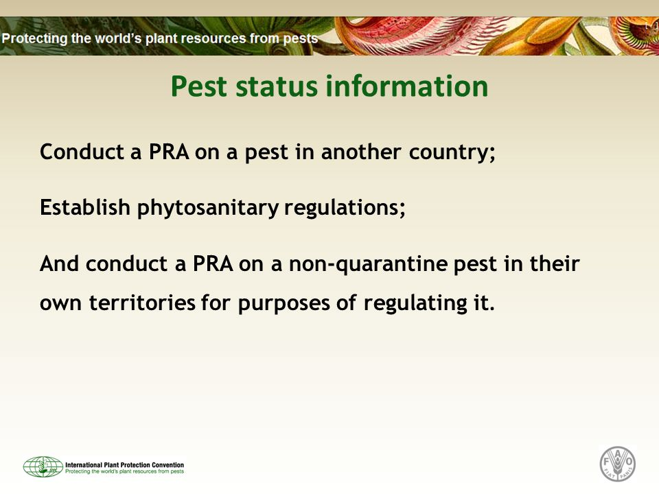 Pest status information Conduct a PRA on a pest in another country; Establish phytosanitary regulations; And conduct a PRA on a non-quarantine pest in
