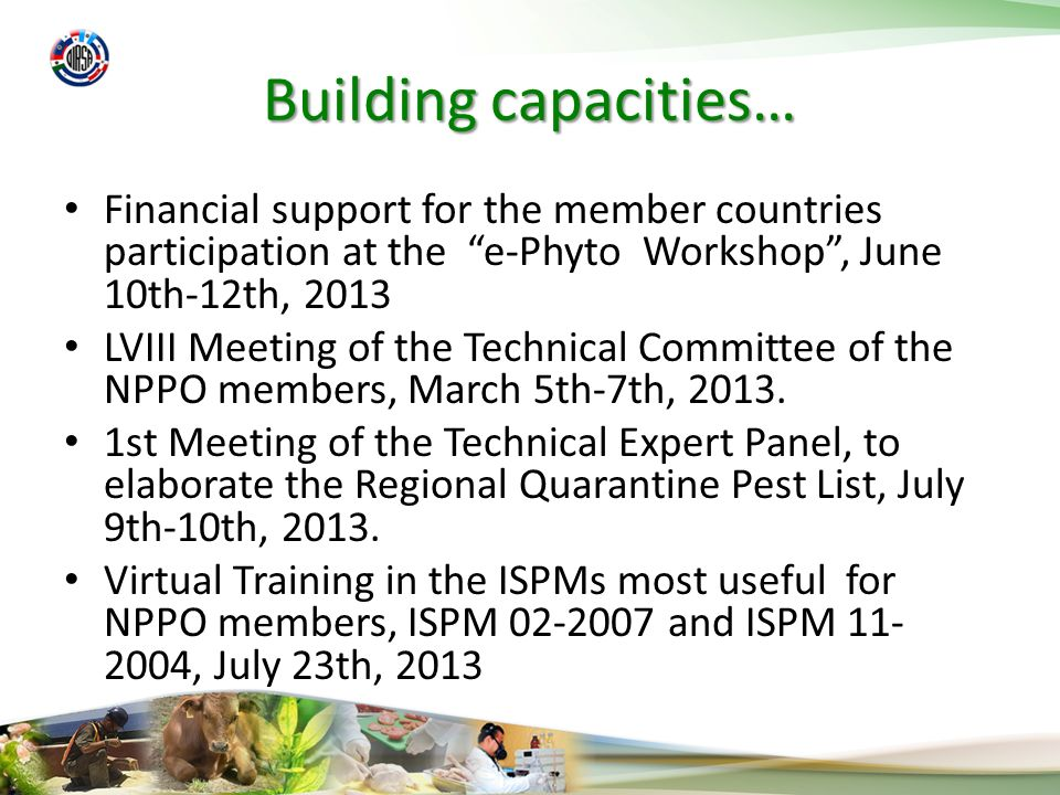 Building capacities… Financial support for the member countries participation at the e-Phyto Workshop, June 10th-12th, 2013 LVIII Meeting of the Technical Committee of the NPPO members, March 5th-7th, 2013.