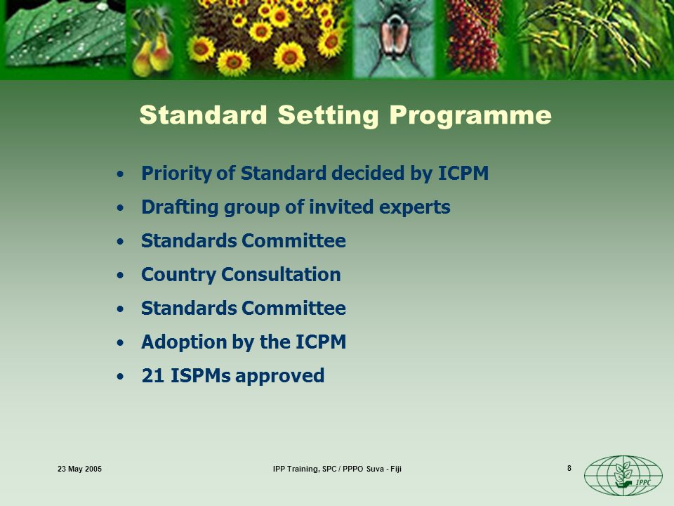 23 May 2005IPP Training, SPC / PPPO Suva - Fiji 8 Priority of Standard decided by ICPM Drafting group of invited experts Standards Committee Country Consultation Standards Committee Adoption by the ICPM 21 ISPMs approved Standard Setting Programme