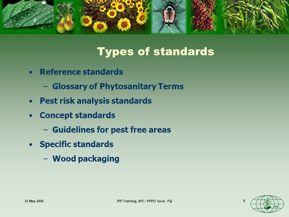 23 May 2005IPP Training, SPC / PPPO Suva - Fiji 9 Types of standards Reference standards –Glossary of Phytosanitary Terms Pest risk analysis standards Concept standards –Guidelines for pest free areas Specific standards –Wood packaging