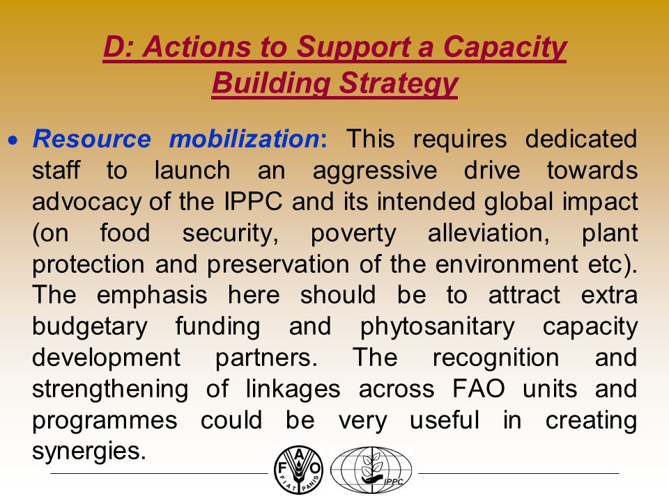 D: Actions to Support a Capacity Building Strategy Resource mobilization: This requires dedicated staff to launch an aggressive drive towards advocacy of the IPPC and its intended global impact (on food security, poverty alleviation, plant protection and preservation of the environment etc).