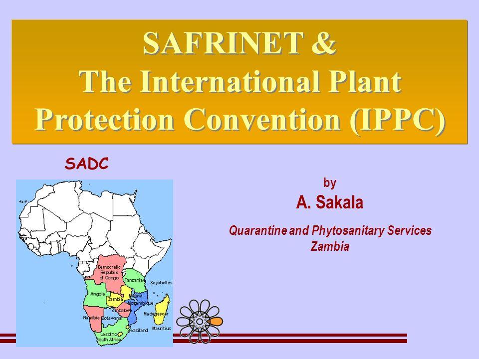 by A. Sakala Quarantine and Phytosanitary Services Zambia SAFRINET & The International Plant Protection Convention (IPPC) SAFRINET & The International