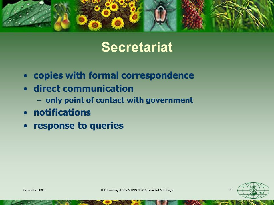 September 2005IPP Training, IICA & IPPC/FAO, Trinidad & Tobago6 Secretariat copies with formal correspondence direct communication –only point of contact with government notifications response to queries