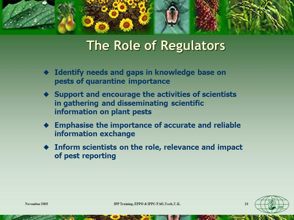 November 2005IPP Training, EPPO & IPPC/FAO, York, U.K.10 The Role of Regulators Identify needs and gaps in knowledge base on pests of quarantine importance Support and encourage the activities of scientists in gathering and disseminating scientific information on plant pests Emphasise the importance of accurate and reliable information exchange Inform scientists on the role, relevance and impact of pest reporting