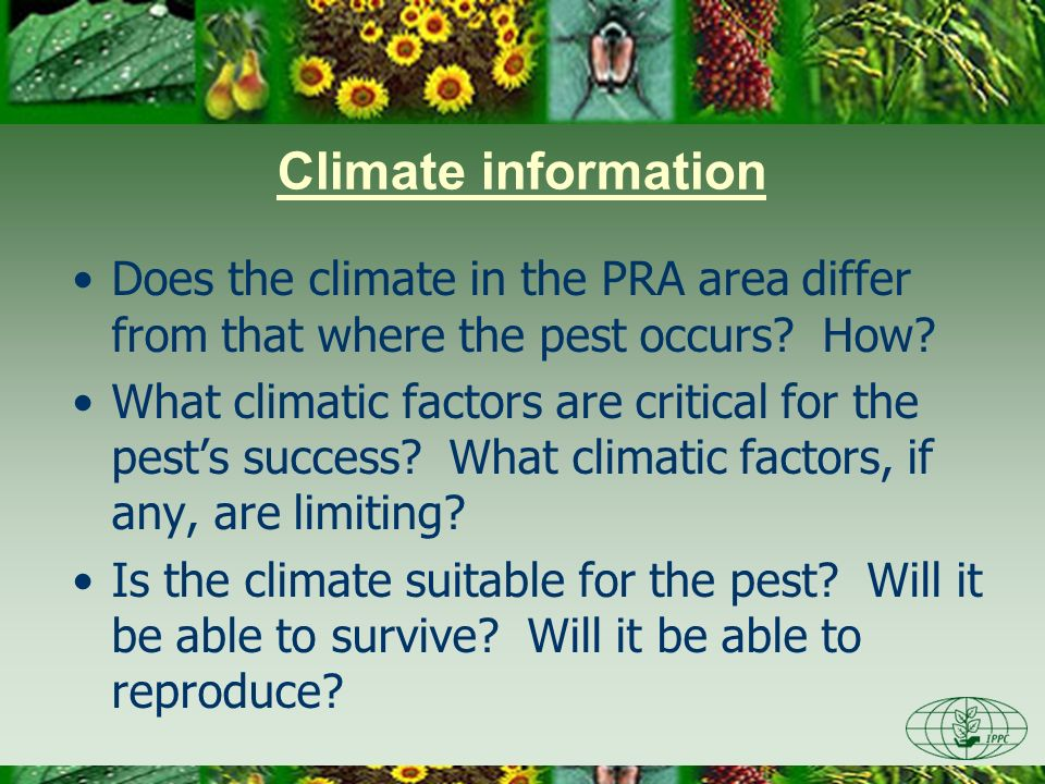 Does the climate in the PRA area differ from that where the pest occurs.