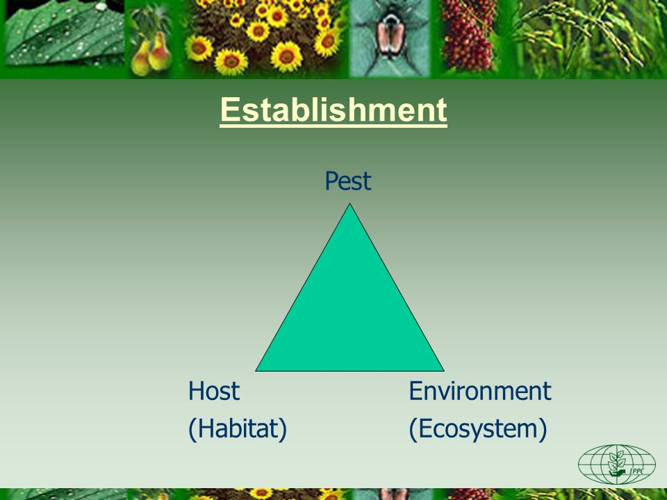 Establishment Pest Host (Habitat) Environment (Ecosystem)