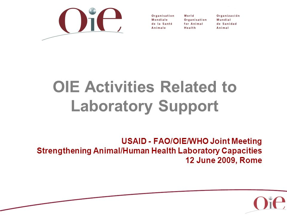 OIE Activities Related to Laboratory Support USAID - FAO/OIE/WHO Joint Meeting Strengthening Animal/Human Health Laboratory Capacities 12 June 2009, R