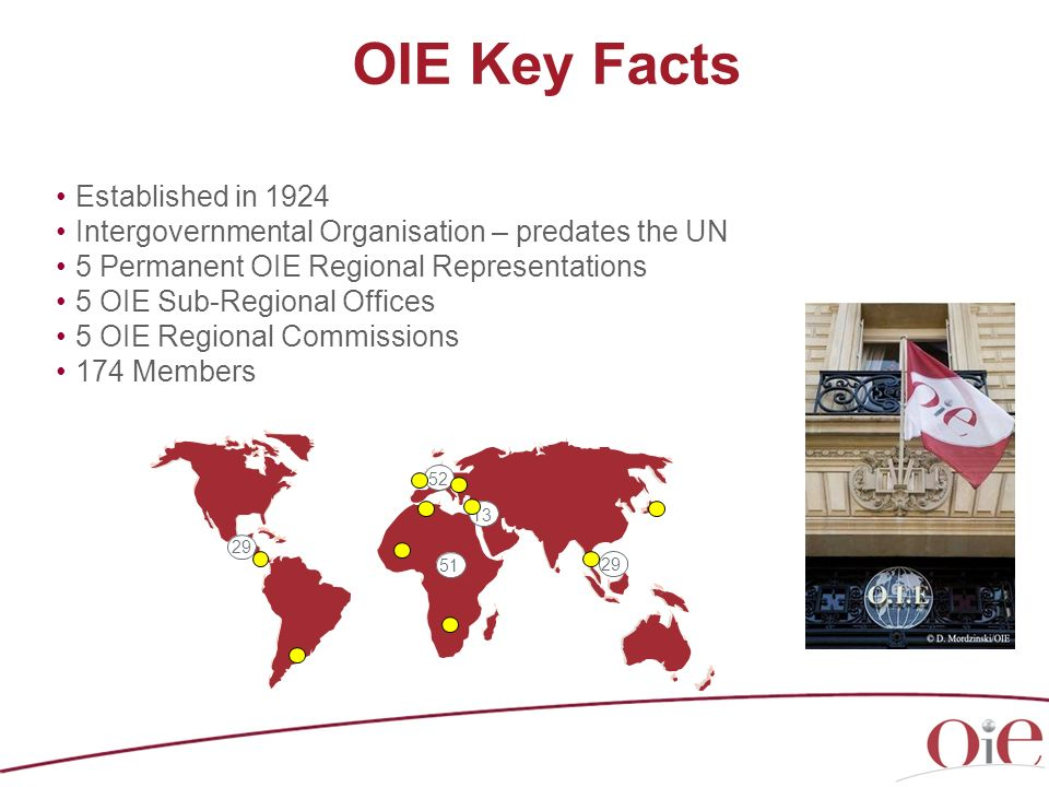 OIE Key Facts Established in 1924 Intergovernmental Organisation – predates the UN 5 Permanent OIE Regional Representations 5 OIE Sub-Regional Offices