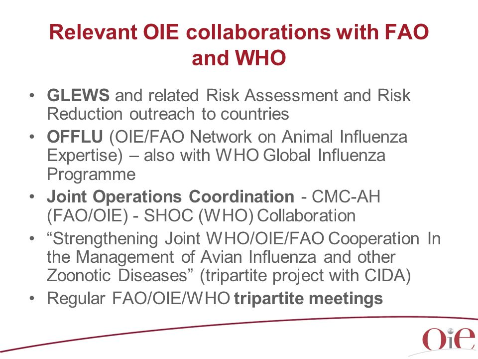 Relevant OIE collaborations with FAO and WHO GLEWS and related Risk Assessment and Risk Reduction outreach to countries OFFLU (OIE/FAO Network on Anim