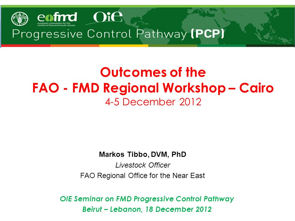 1.Improved understanding of the Global FMD control strategy and endorsed Regional FMD Control Strategy for a coordinated and harmonized FMD control under the Global framework of FMD control.