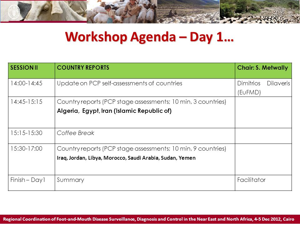 Workshop Agenda – Day 2 Regional Coordination of Foot-and-Mouth Disease Surveillance, Diagnosis and Control in the Near East and North Africa, 4-5 Dec 2012, Cairo SESSION III REVIEWING OF REGIONAL STRATEGY & EPIDEMIOLOGY AND SOCIOECONOMICS Chair: K.