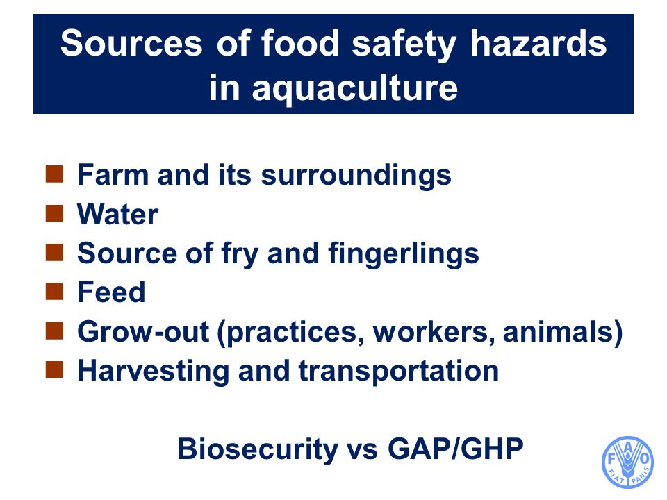 Sources of food safety hazards in aquaculture Farm and its surroundings Water Source of fry and fingerlings Feed Grow-out (practices, workers, animals