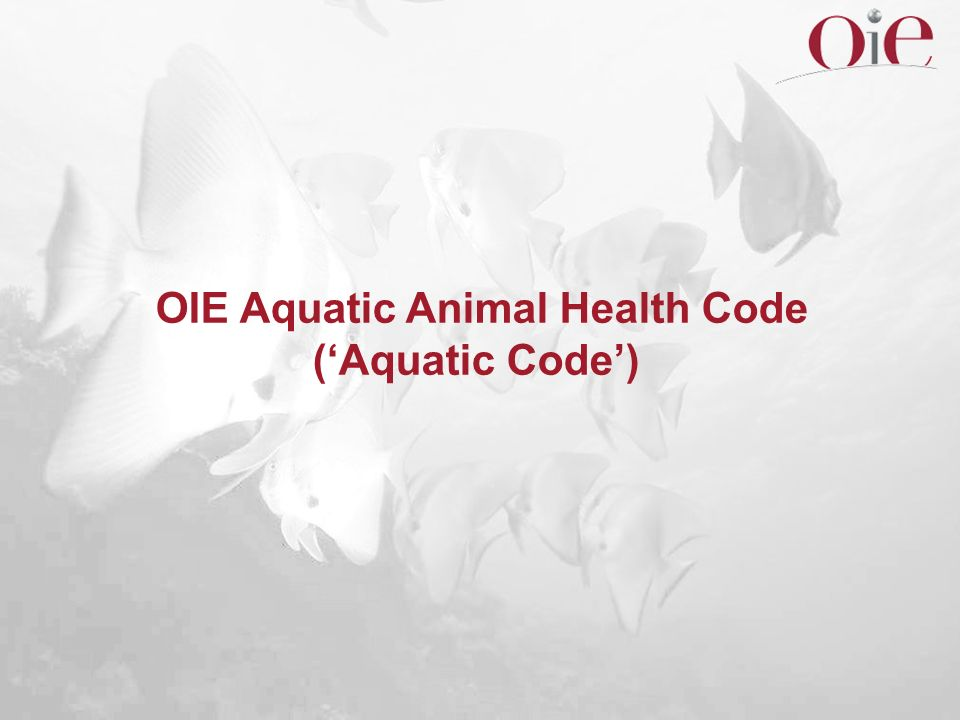 OIE Aquatic Animal Health Code (Aquatic Code)