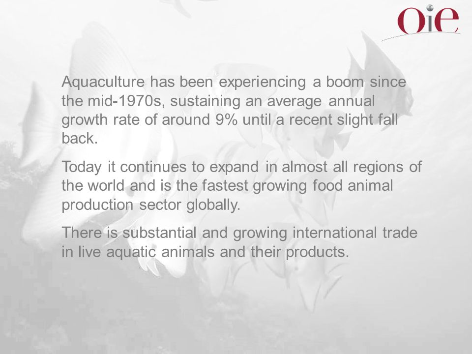 Aquaculture has been experiencing a boom since the mid-1970s, sustaining an average annual growth rate of around 9% until a recent slight fall back. T
